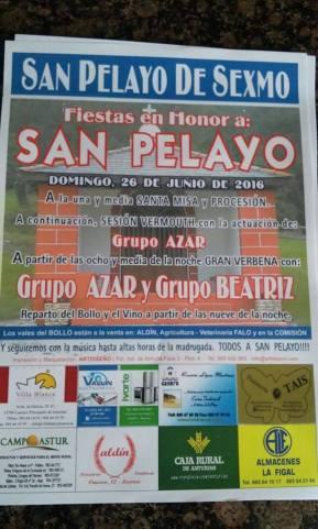 cartel pelayo